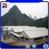 Casa de pollo prefabricada de la estructura de acero para la venta