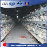 Автоматическая заводе прямые поставки цыпленок слоя каркаса дешевые куриные каркас для плат птицеводства оборудование