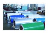 Aluminio recubierto / aluminio de la bobina / placas / Hojas (AR-090)