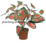 Planta Artificial Caladium deixa para decoração exterior