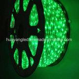Striscia flessibile completa di colore DC12V 5050 LED per la decorazione esterna