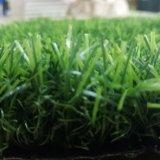 [فكتوري بريس] زخرفيّة يرتّب عشب اصطناعيّة لأنّ حديقة