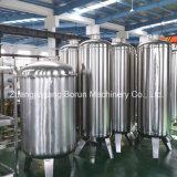 RO het Systeem van de Behandeling van het water voor de Fabriek van het Drinkwater