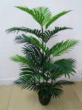 Искусственные растения и цветы Palm Tree Gu-Mx-Phoenix-Palm-165СМ