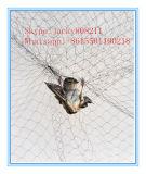 Alta resistencia malla de plástico anti Bird para la captura de aves