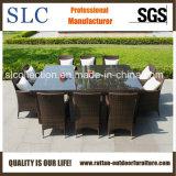 屋外の家具の柳細工の屋外の家具のコマーシャル(SC-A7197)
