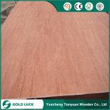 madera contrachapada de 3mm/3.2m m Bintangor/Okoume para la piel de la puerta