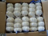 새로운 작물 중국 신선한 순수한 백색 마늘