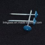 De gemeenschappelijke Gegalvaniseerde Spijker van het Dakwerk van de Paraplu van het Staal voor de Bouw van het Dak (STRN04)