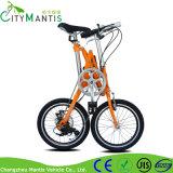 Bicicleta de dobramento de pouco peso da cidade da bicicleta 18inch para a venda