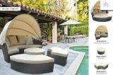 침대 등나무 리오 안뜰 고정되는 옥외 고리 버들 세공 부분적인 소파 정원 가구 세트