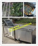 Fruit en Vegetable High Pressure Cleaner