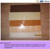 Гальванизируя покрашенный лист PVC для обруча барабанчика