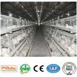 Matériel de ferme avicole de système de cage de poulet à rôtir de Chine