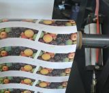 Machine d'impression multi à grande vitesse de Flexo de couleur