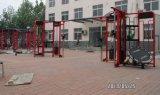 Strumentazione di forma fisica/strumentazione di ginnastica/sinergismo 360