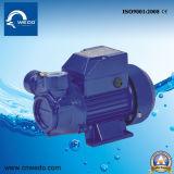 Ожср Lq-300A серии электрический насос для чистой воды для дома и сельского хозяйства (1 л.с.)