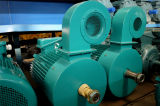 Электродвигатель подъема/ крана электродвигателя/ электродвигателя