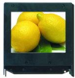 3.5 Bildschirmanzeige des Zoll-320X240 230nits Stn LCD