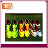 Três cores Stock Soccer Shoes for Men (YH022)