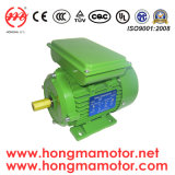 Hm (Y2, YE2 and YE3) Series Three Phase High/Premium Efficiency Electric Motor