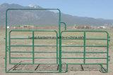 Во дворе портала панели Тип крупного рогатого скота Ограждения панели