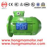 Hm (Y2、YE2、YE3)のシリーズ三相高い優れた効率の電動機