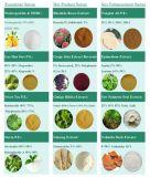 Antocianina Natural 5%-25% del Extracto de la Baya del Saúco del Suplemento del Alimento