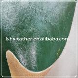 مضيئة مادّة اصطناعيّة [بو] جلد لأنّ أحذية خفاف [هإكس-س1761]