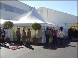 عرس زخرفة حزب قابل للوصل [بغدا] ظلة خيمة