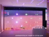 Schermo di visualizzazione della maglia del LED (tenda trasparente del LED 80%)