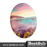 "Flat Round Ceramic Plate (9 "")"