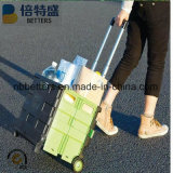 Einfach öffnen und Falten Plastis Einkaufen-Laufkatze-Karre mit 2 Rädern