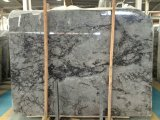 Мрамор серого цвета плитки пола камня Quintessence нового продукта