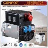 5kVA hete Verkoop dubbel-Draagt Alterantor met de Elektrische Last van de Batterij van de Borstel AVR,