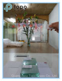 Vetro vario della radura di spessore, vetro decorativo del galleggiante della radura, lastra di vetro (W-TP)