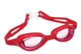 De Gemakkelijke Beschermende bril van uitstekende kwaliteit van de Sporten van het Water van de Klem