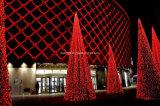Ornement extérieur de Noël de décoration de vacances de DEL