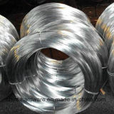 A fábrica de arame de ferro galvanizado revestido de zinco/ Fio vinculativo com preço baixo