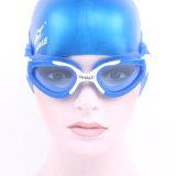Óculos de proteção coloridos da natação da lente adulta do Cp