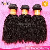 Remy brasileira de cabelo humano Bohemian Kinky Curly tecer Cabelos Virgens