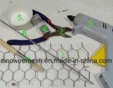 競争価格の家禽のケージのための電流を通された六角形の金網