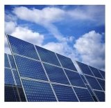 High Quanlity High Efficiency Polycrystalline Poly Silicon Solar Panel