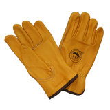 Golden Cow Grain Leather Safety Drivers Gloves