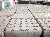 Batteria solare sigillata batteria 12V 24ah di Rechargeble dell'alto ciclo acido al piombo di VRLA