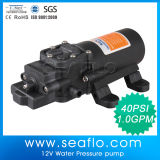 Seaflo heißer Verkauf 12V/24V Gleichstrom-elektrische Wasser-Pumpe verkauft nach Korea