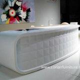 Corianのアクリルの固体表面の家具によって切り分けられるフロント