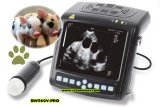Geräten-Digital-beweglicher Veterinärultraschall-Scanner, Tierarzt-Ultraschall, verwendeter Ultraschall, Ultraschallsignalumformer-Preis, Wiedergabe-Ultraschall