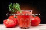 2-20TPH de industriële van de de tomatenpuree van de tomatenpulp machines van de het tomatesapproductie