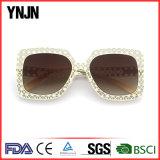 Ynjn New Designer High Quality Ladies Sun Glasses